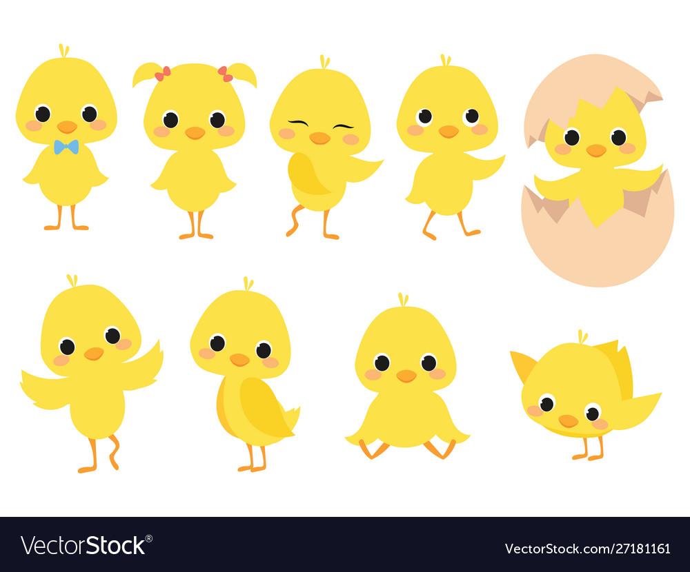Set cartoon chicks a collection cute yellow