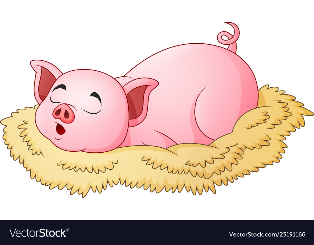 Cute Pig Cartoon Sleeping Royalty Free Vector Image