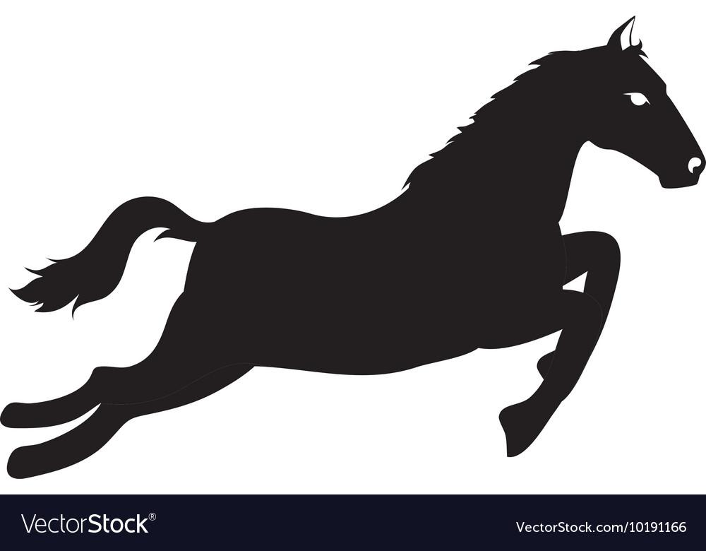 Horse ride equine icon graphic