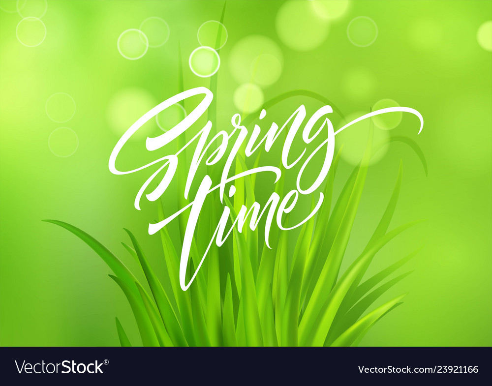 Spring time handwritten calligraphy lettering with