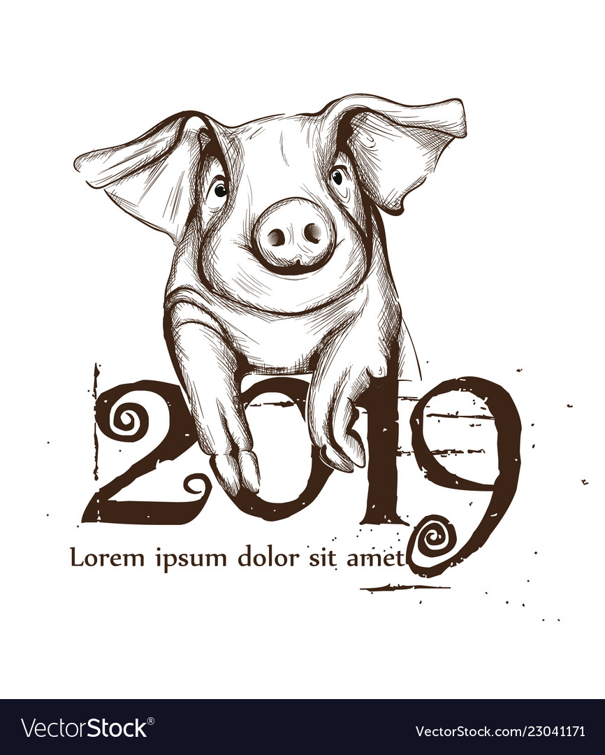 2019 Chinese Pig Year Card Line Art Royalty Free Vector