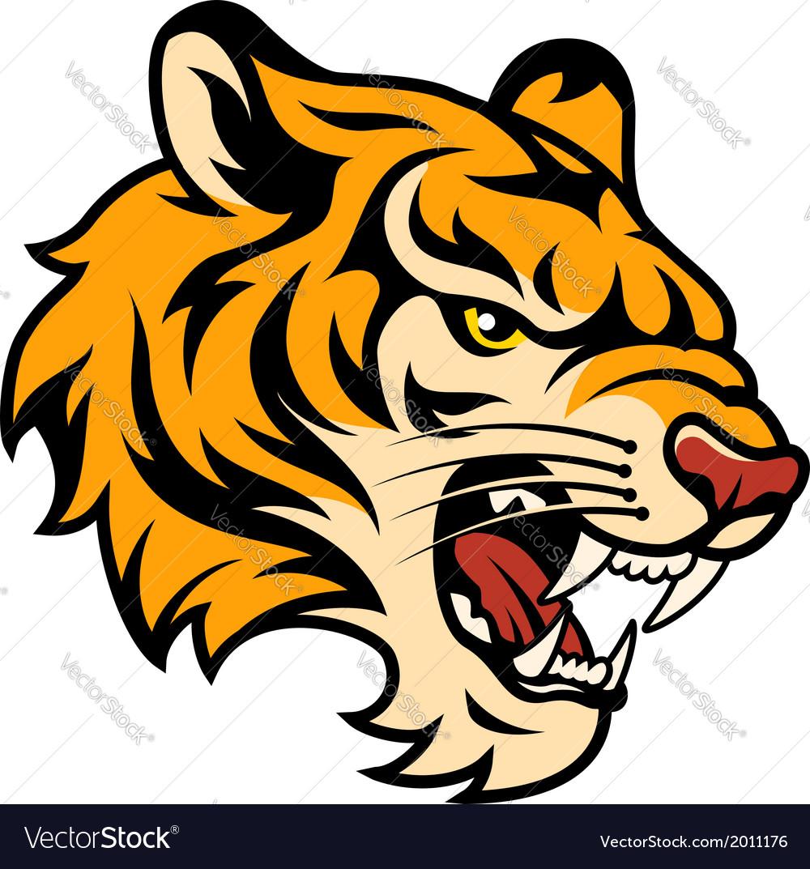 Tiger color vector image