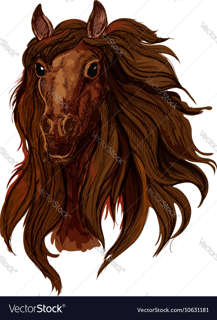 Horse Face Realistic Vector Images 25