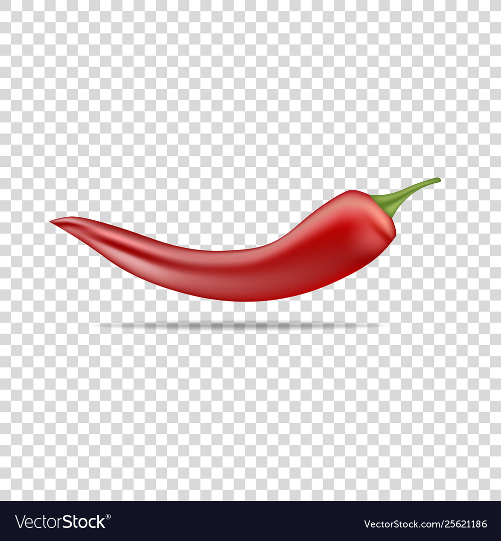 Red hot natural chili pepper pod realistic image