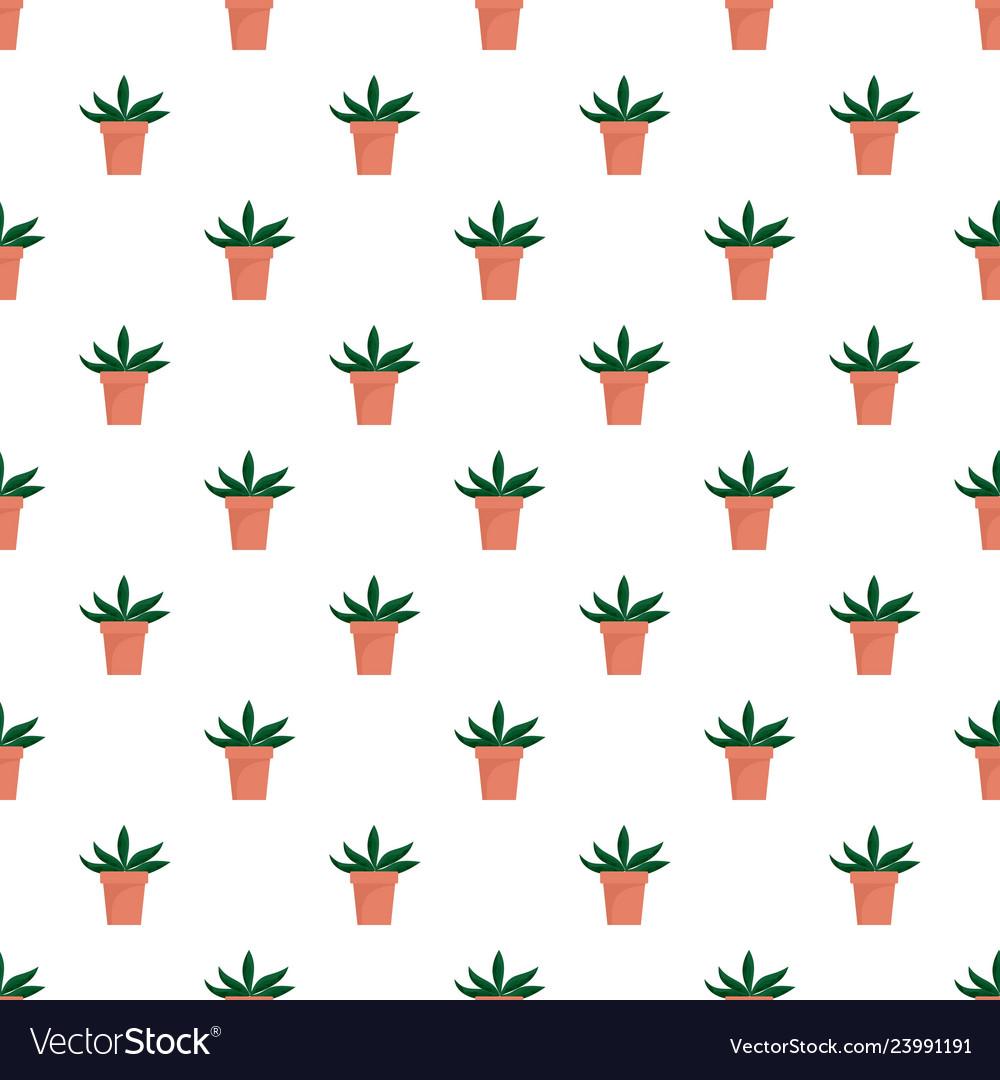 Home cactus pot pattern seamless