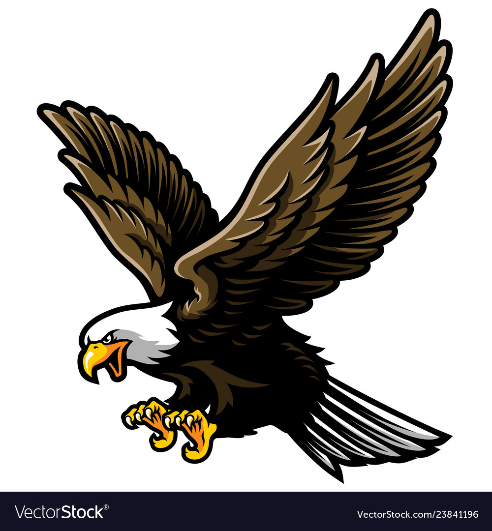 American bald eagle with open wings and claws in