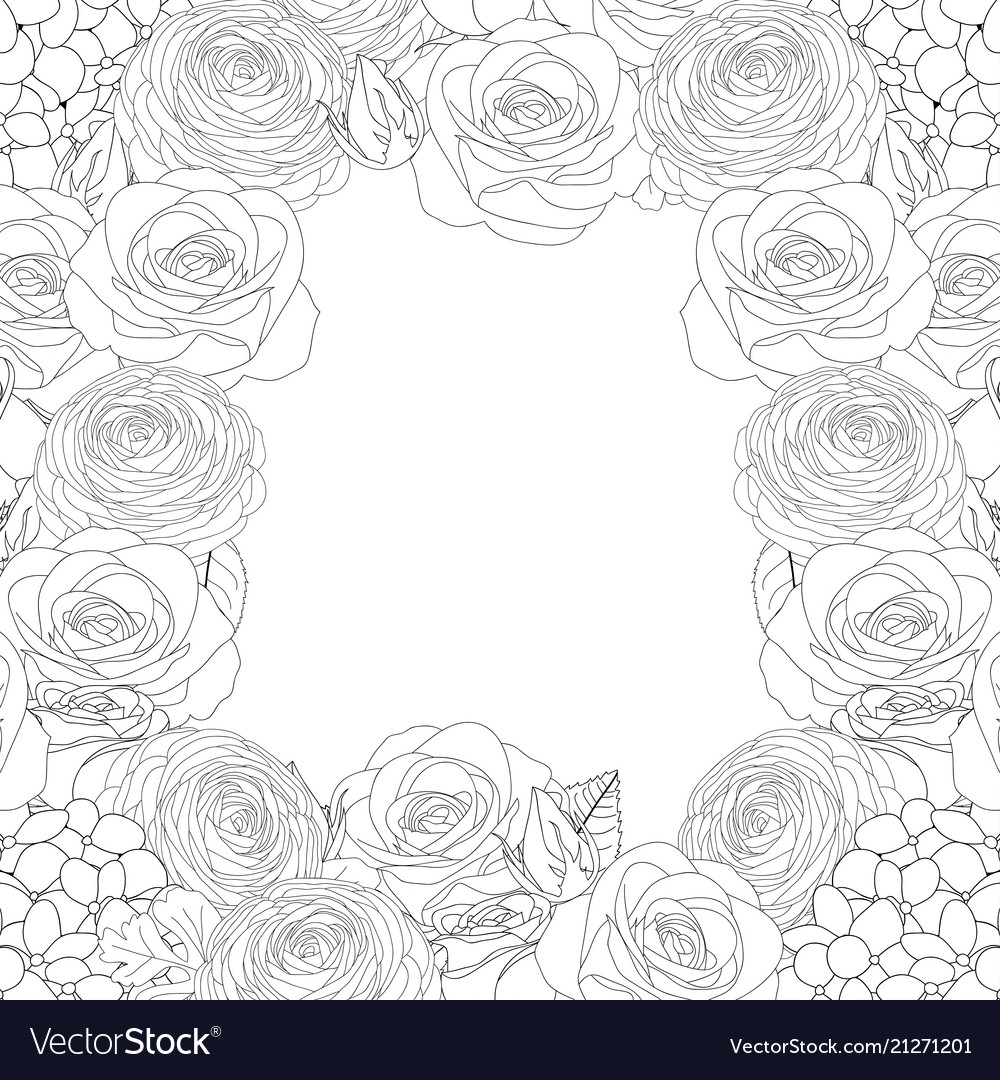 Rose hydrangea and ranunculus outline border
