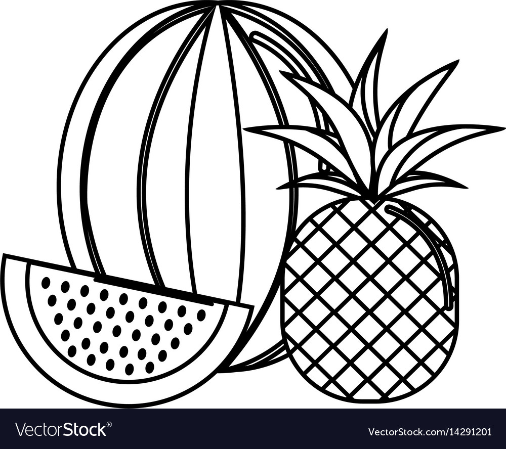 Silhouette watermelon and pineapple fruit icon vector image