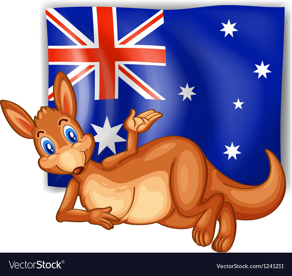 A kangaroo in front of the Australian flag vector image