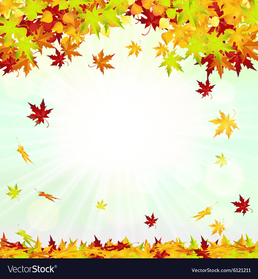 Autumn Frame With Falling Leaves vector image