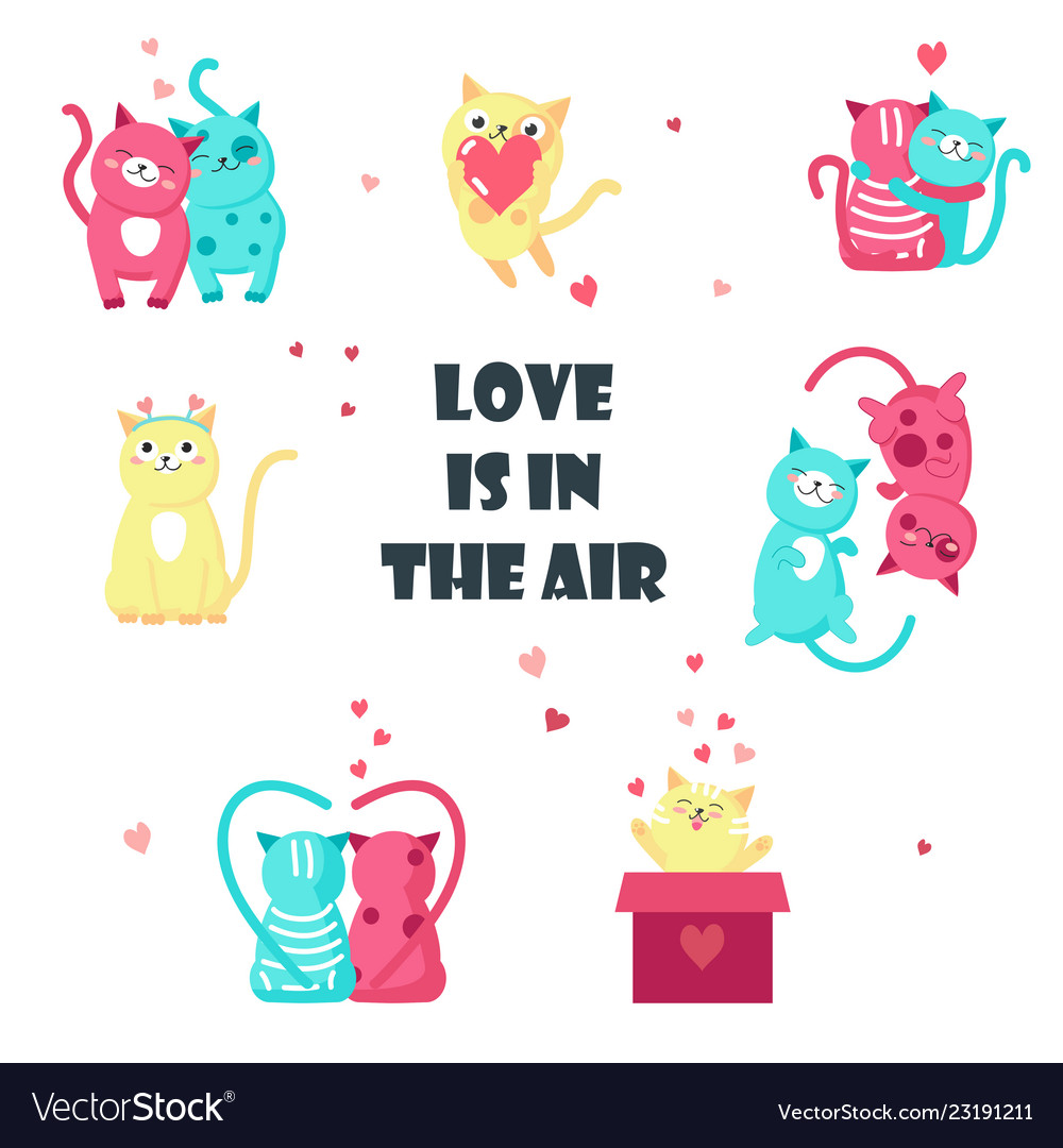 Cute cats in love isolated