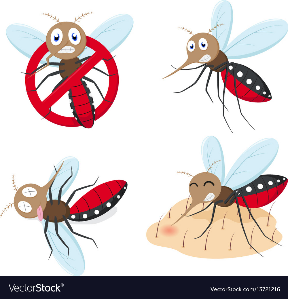 Mosquito cartoon collection set vector image