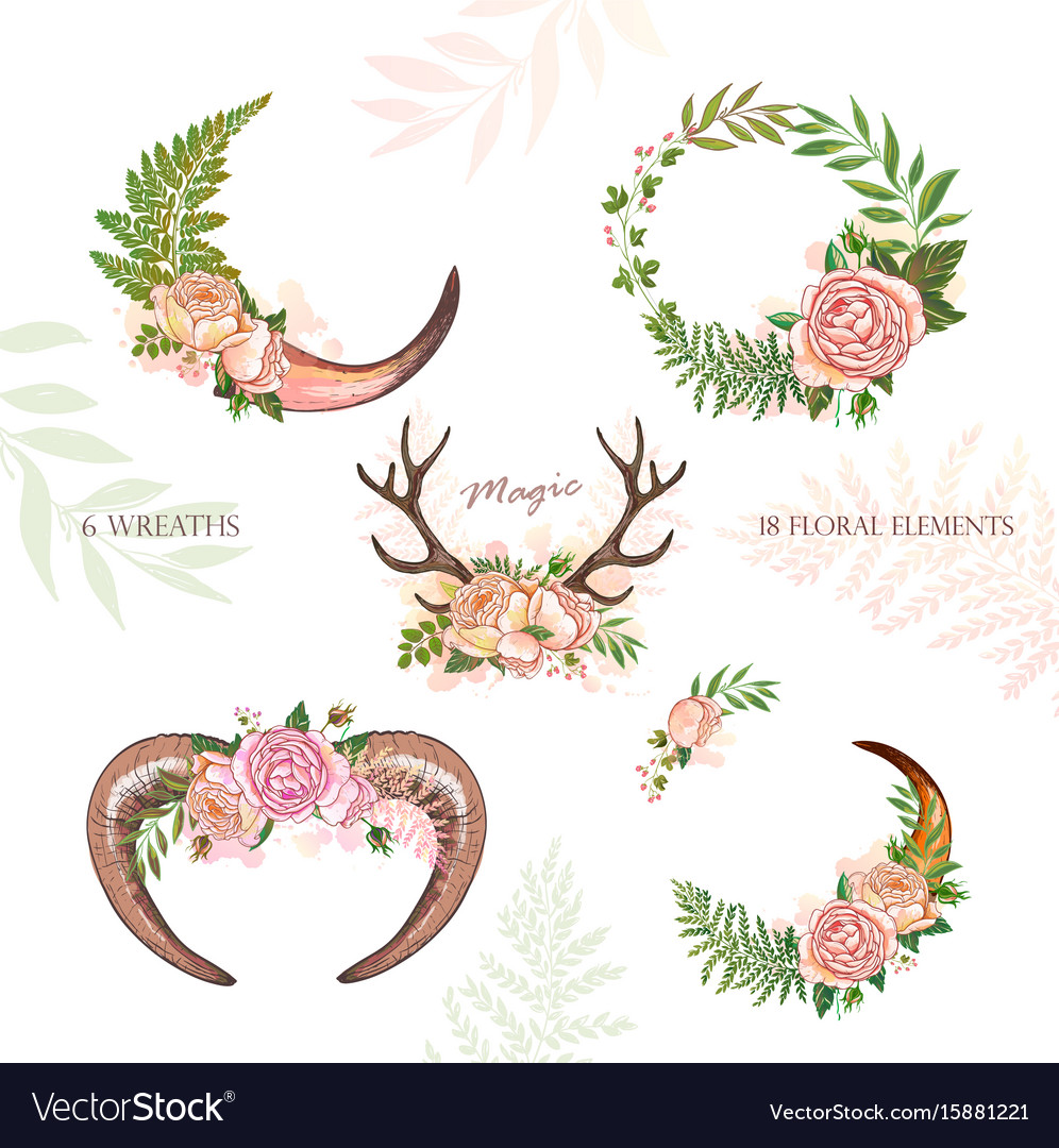 Horn and cow horn decoration vector image