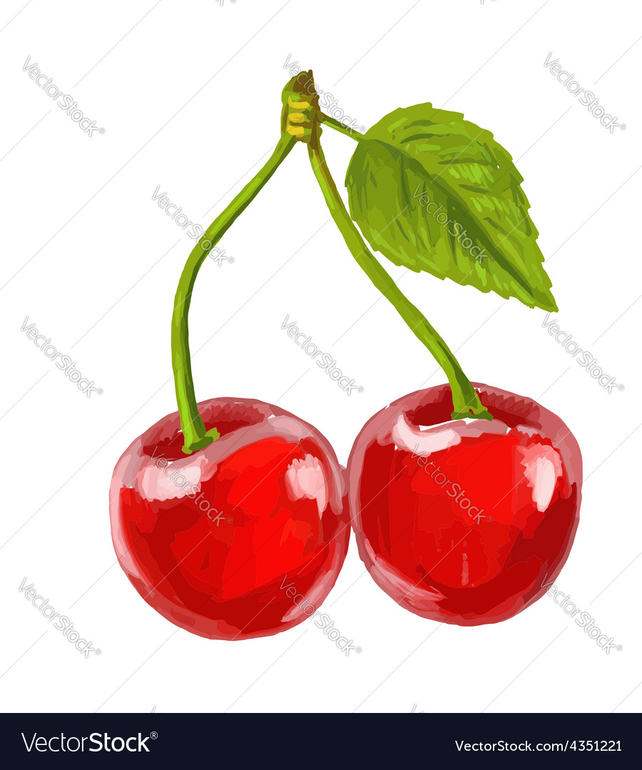 Picture of red cherry