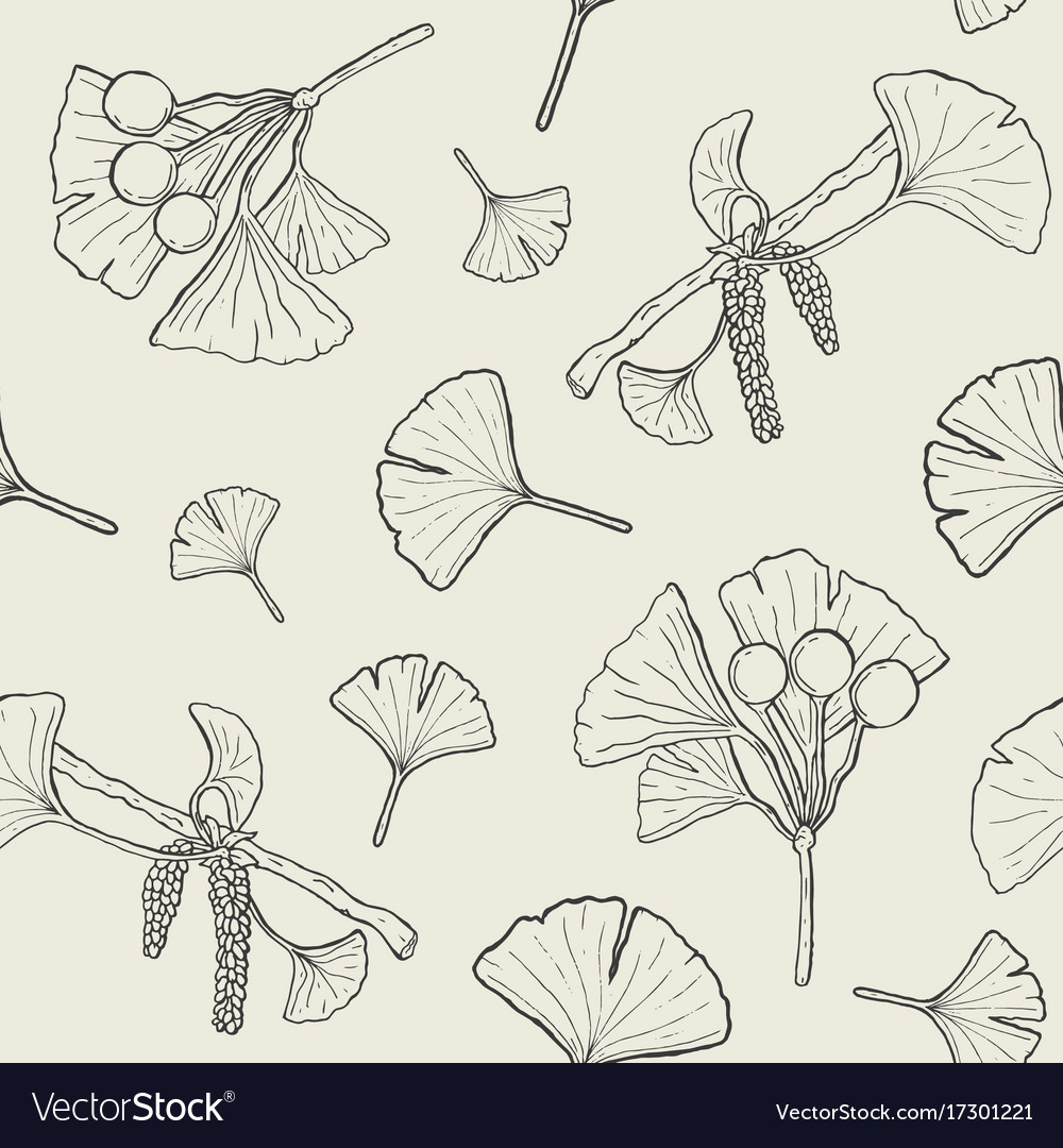 Seamless pattern with ginkgo biloba branches and vector image