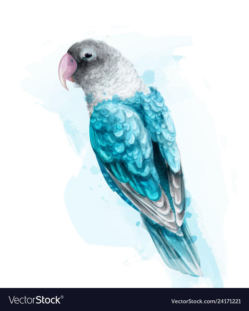 Tropic colorful parrot bird watercolor