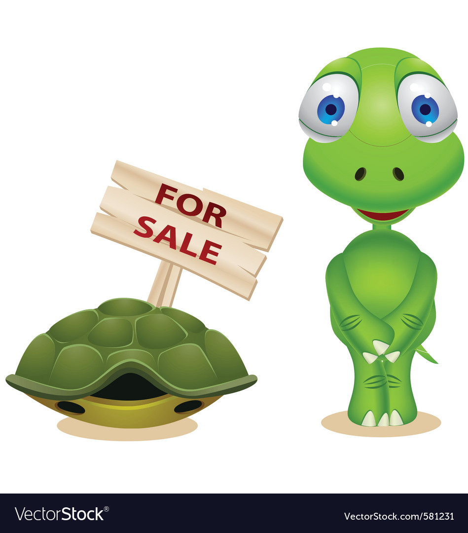 Turtle Sell His Shell Royalty Free Vector Image