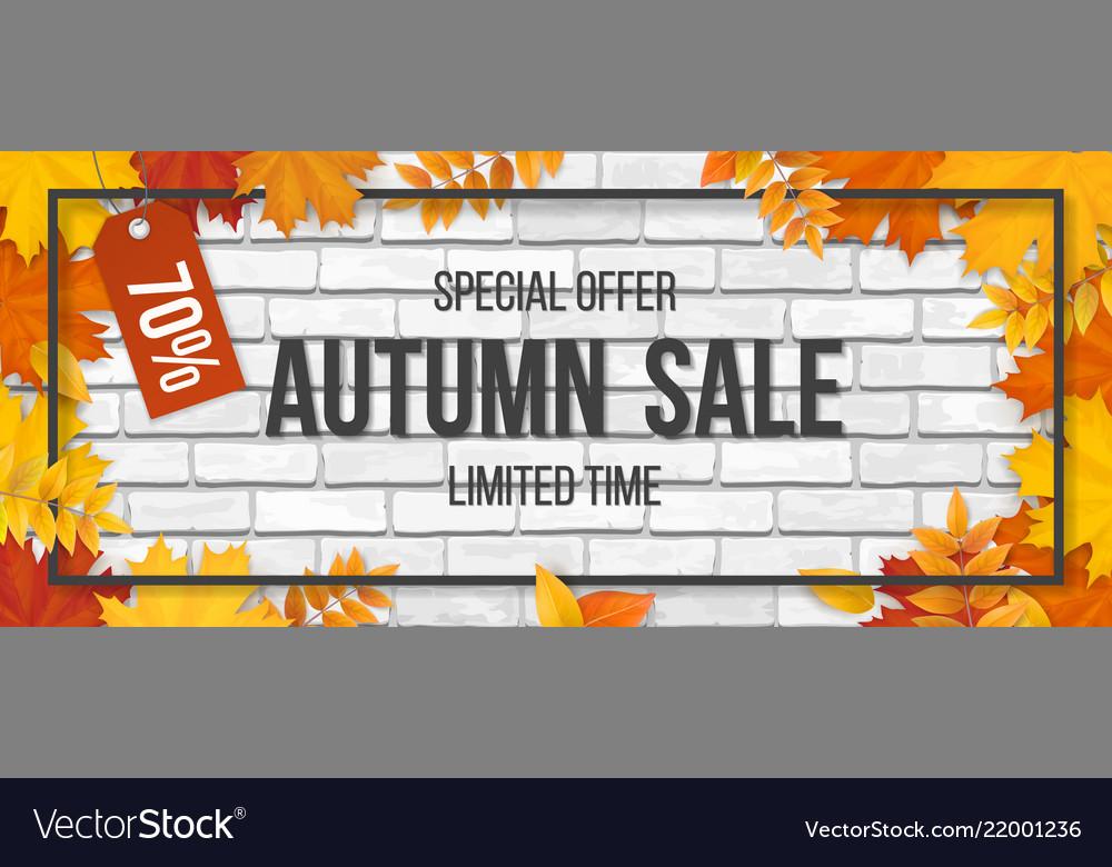 Autumn sale fallen maple leaves frame brick