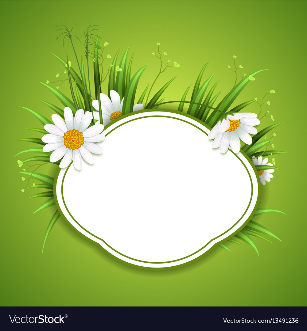 Circle grass frame with copy space