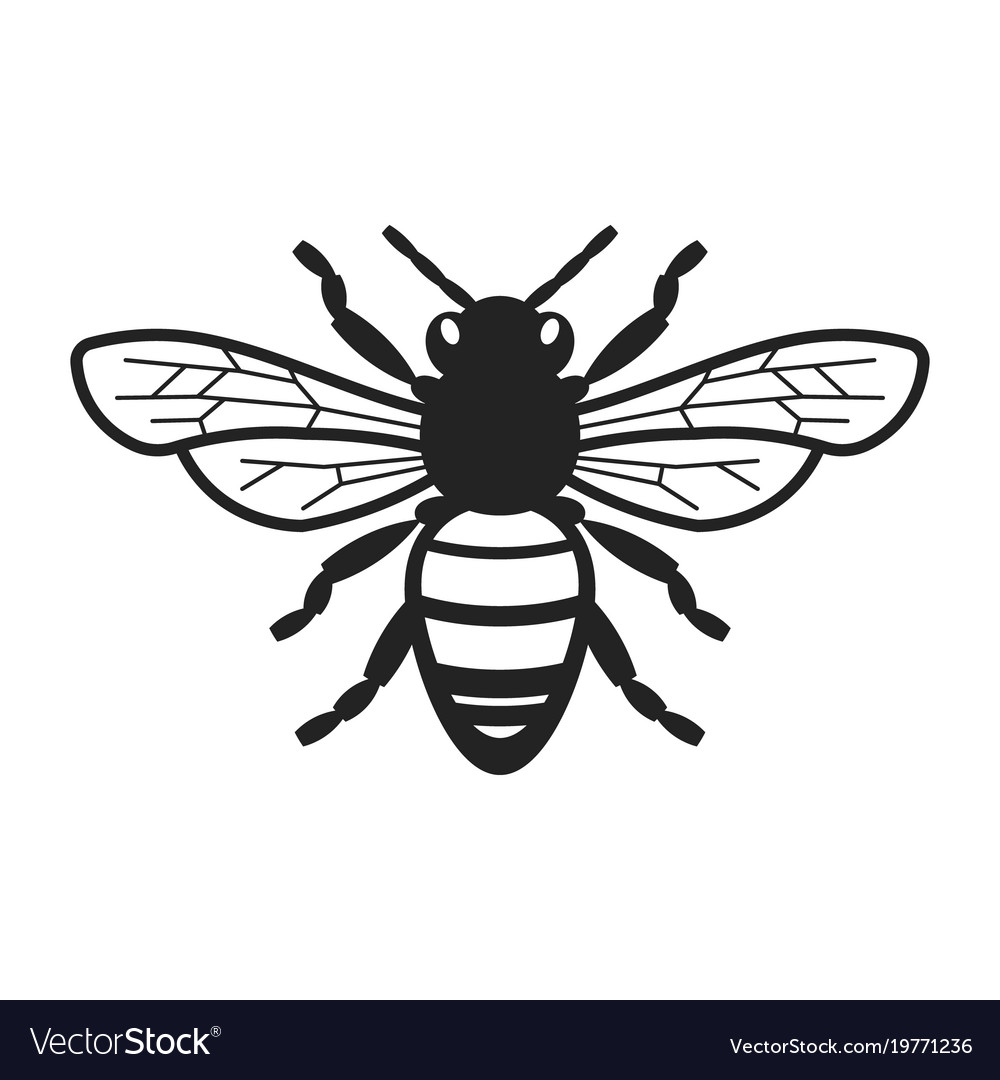 honey bee royalty free vector image vectorstock rh vectorstock com bee vectoring technology bee vector drawing
