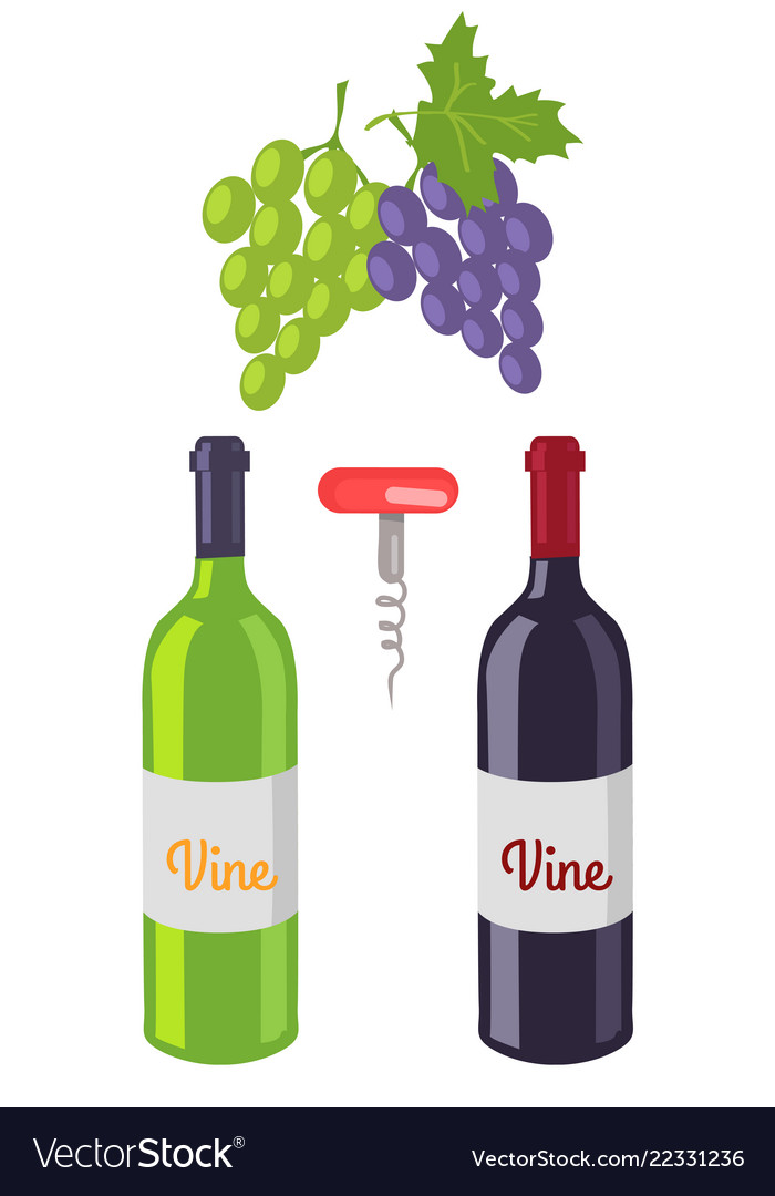 Wine bottles and grapes set