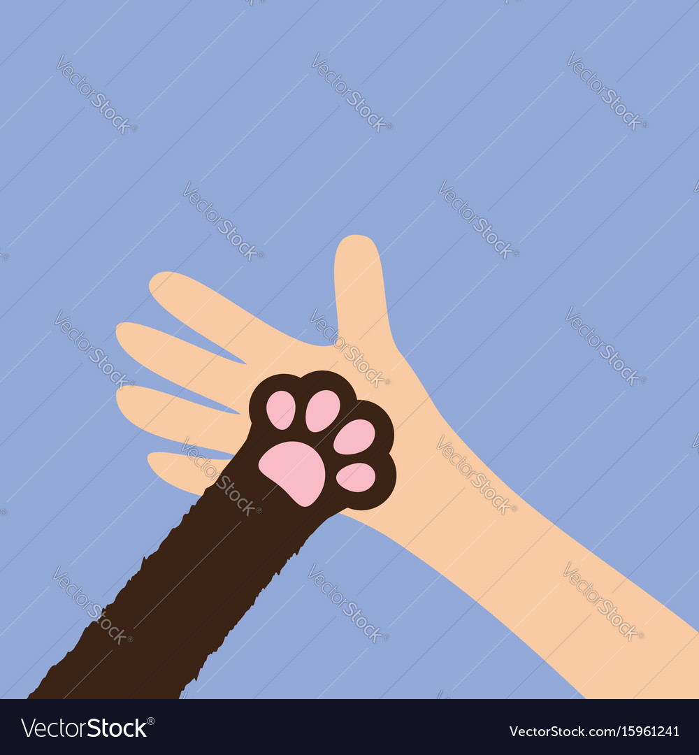 Hand arm holding cat dog paw print leg foot close