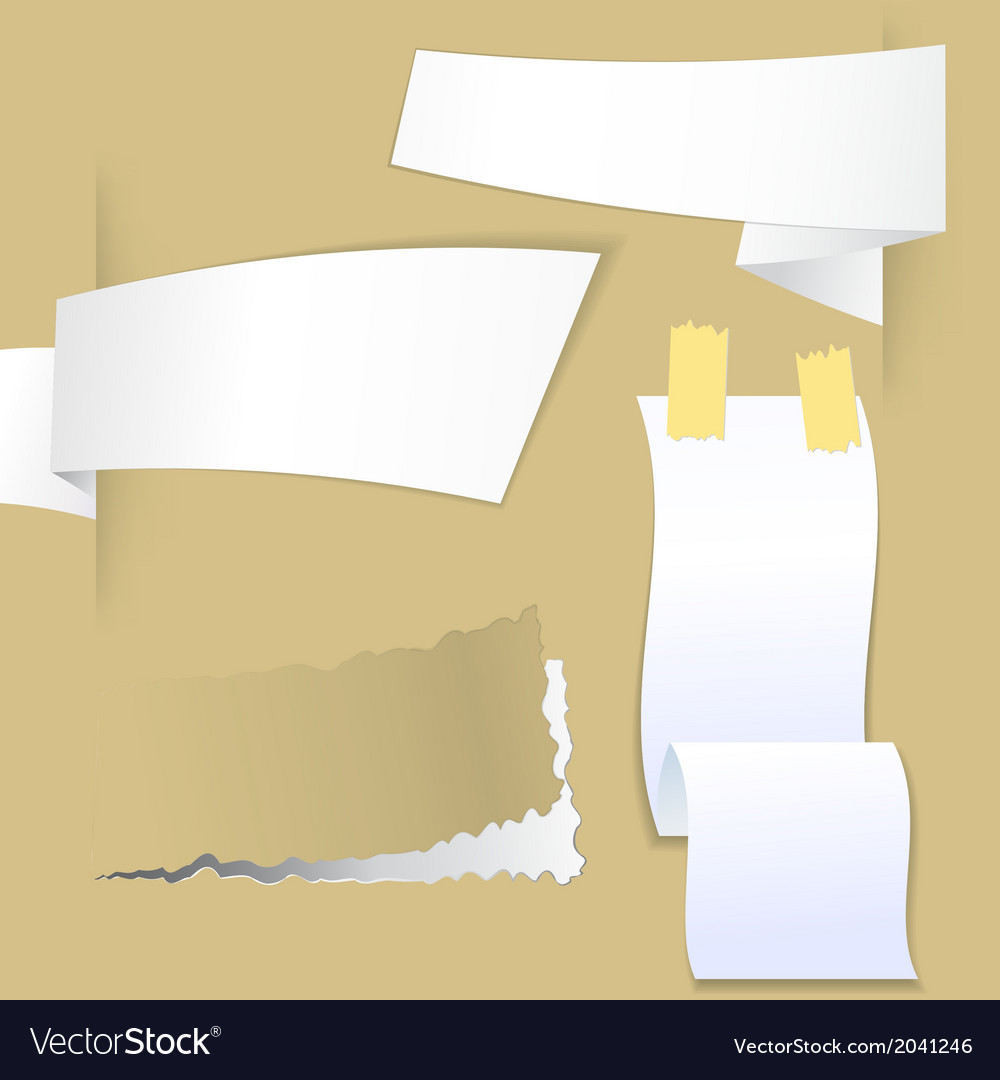 Collection with various pieces of paper vector image