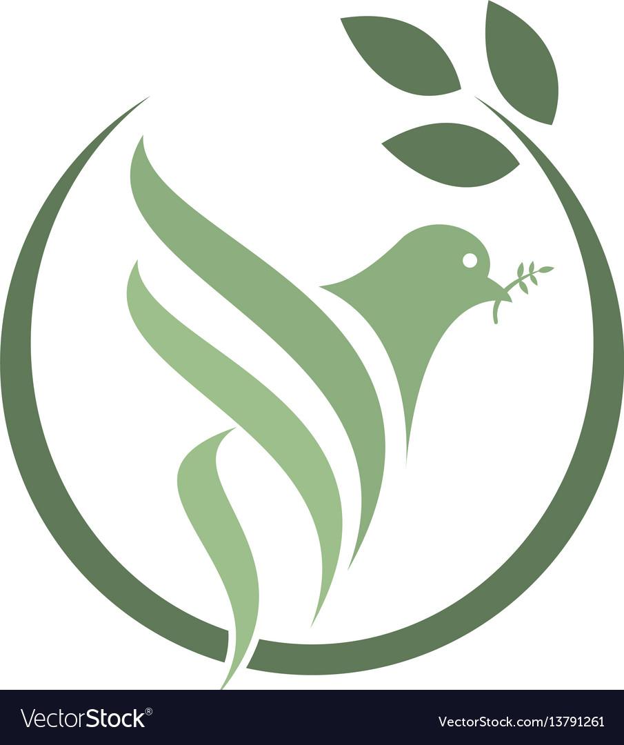Pigeon isolated logo