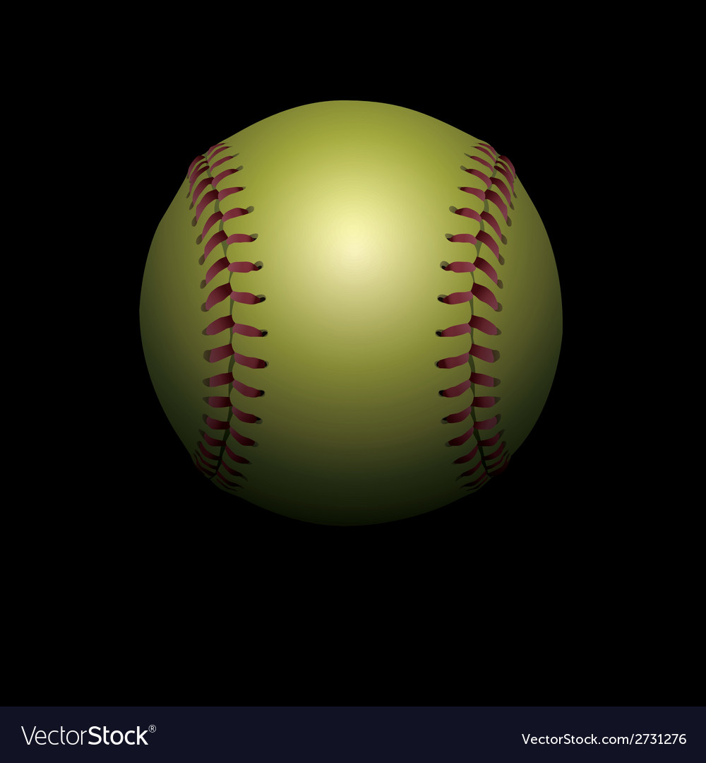 Softball on Black vector image