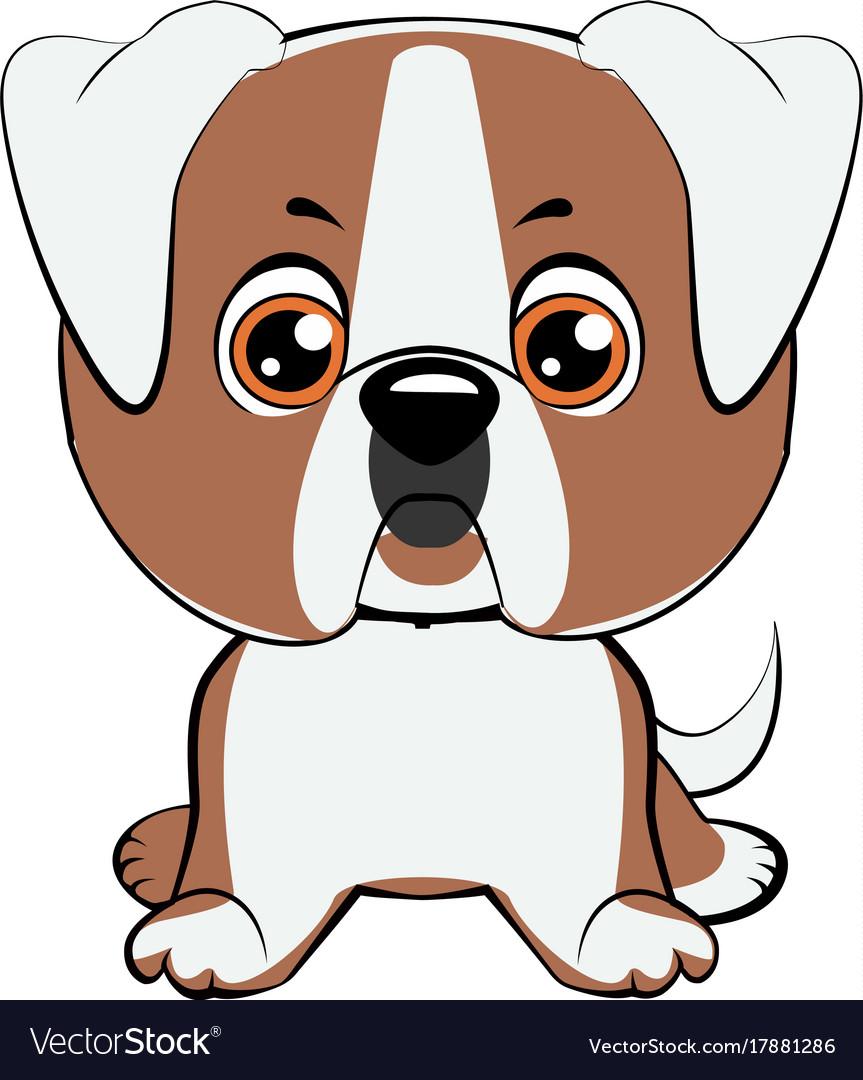 A of an american bulldog puppy