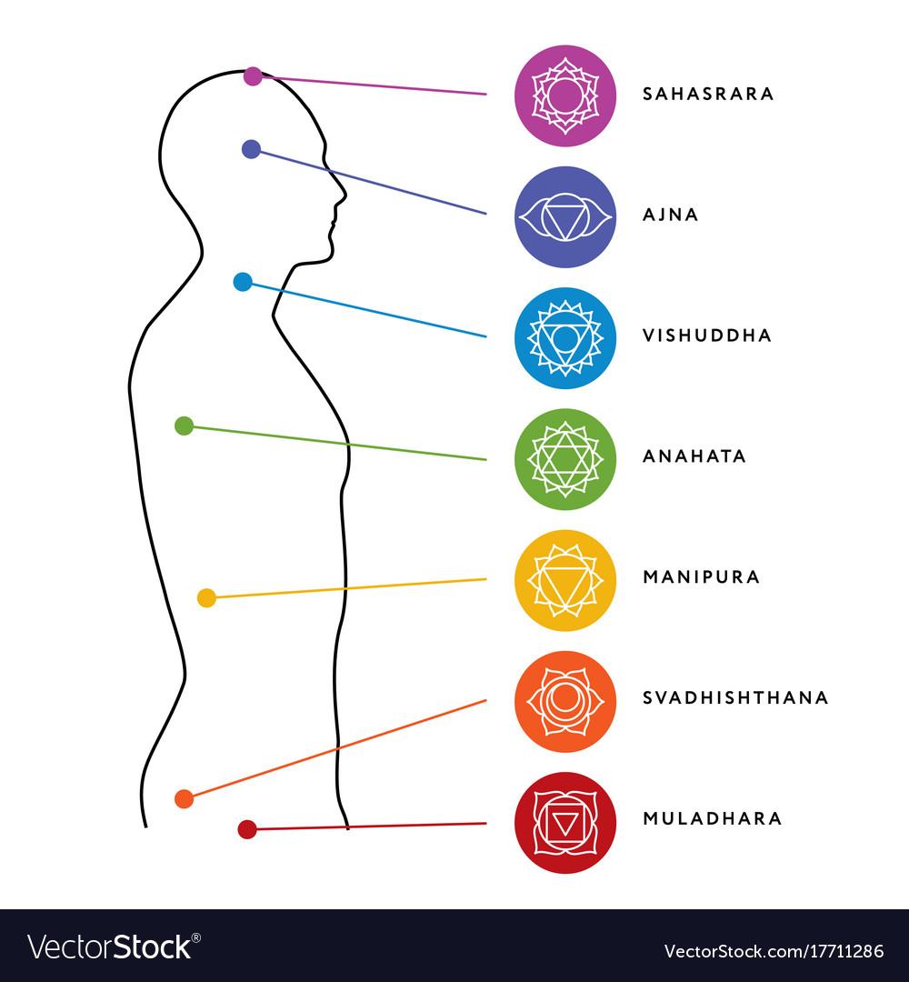 Human Design Chakra System