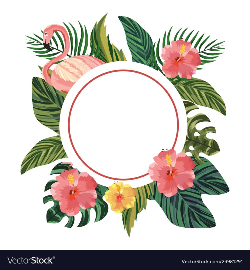Beautiful tropical flowers cartoon