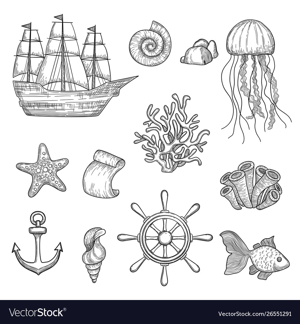 Nautical elements ocean fish shells boats ships