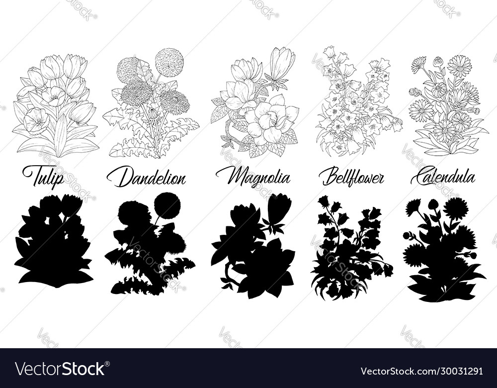 Set black and white outline flowers