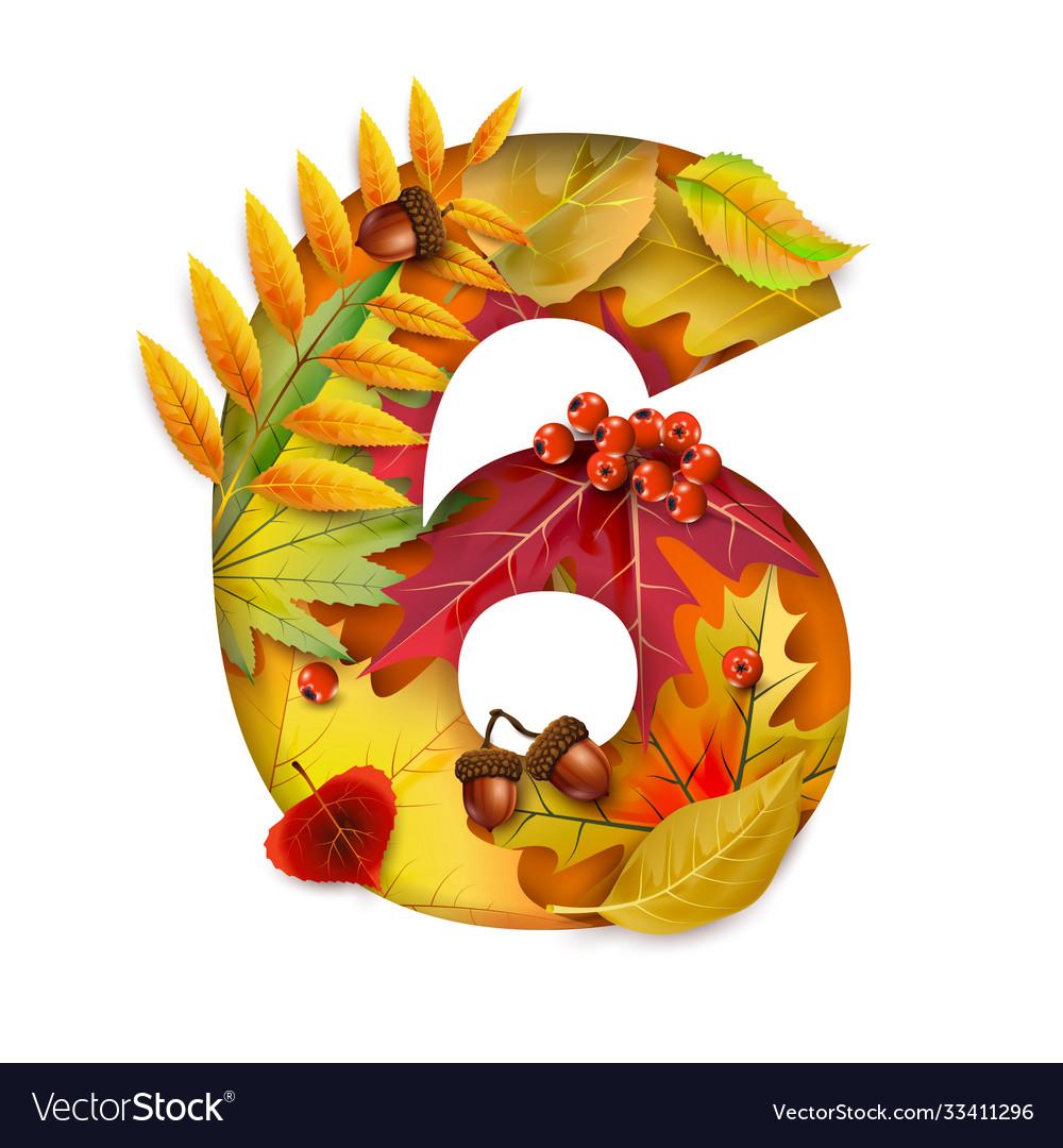 Autumn stylized alphabet with foliage digit6