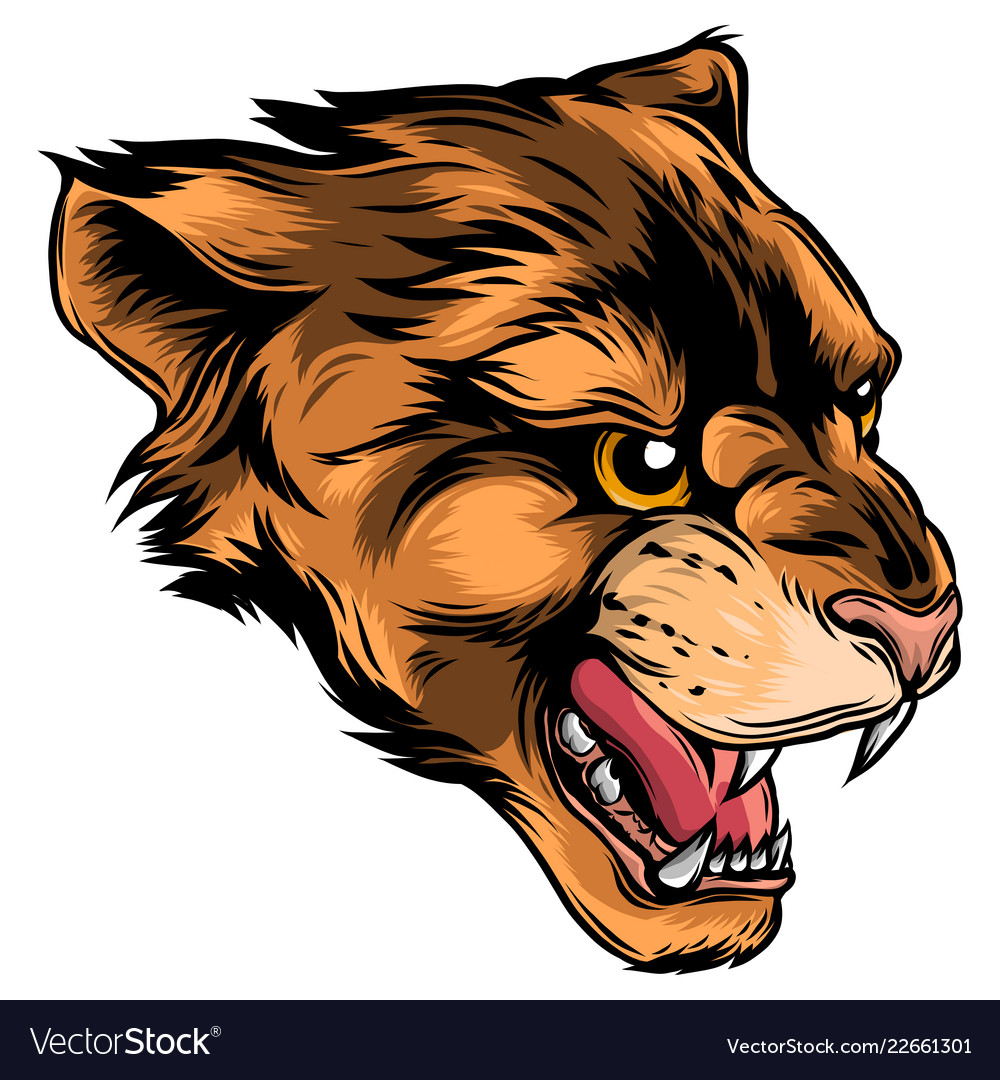 Cougar panther mascot head graphic