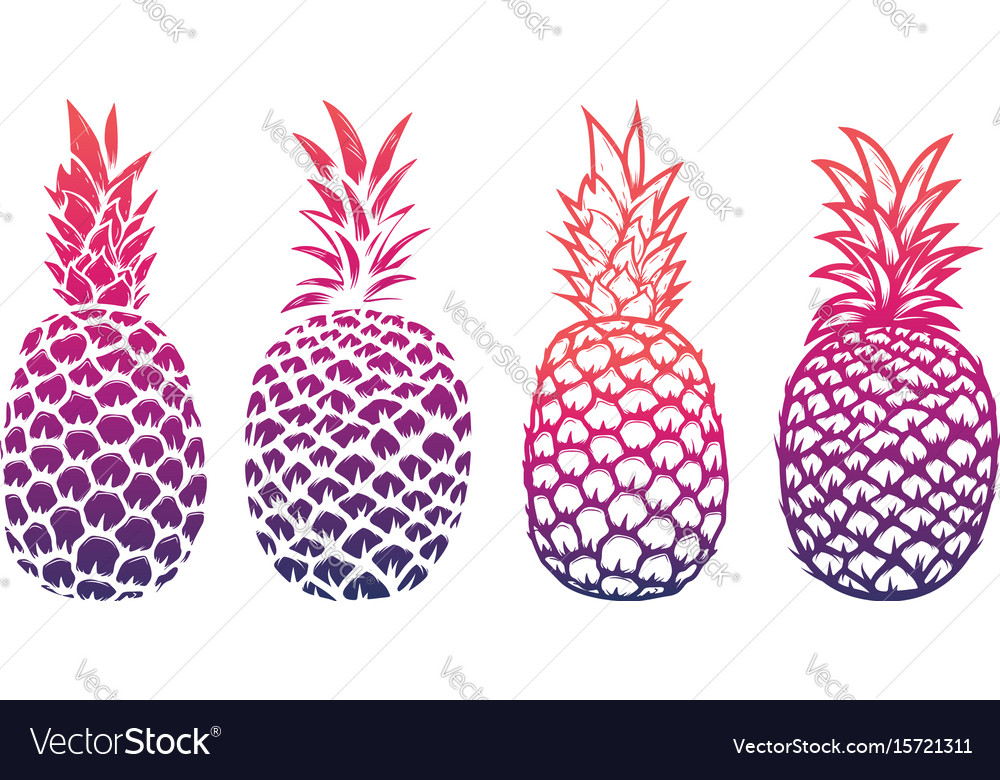 Set of pineapple isolated on white background