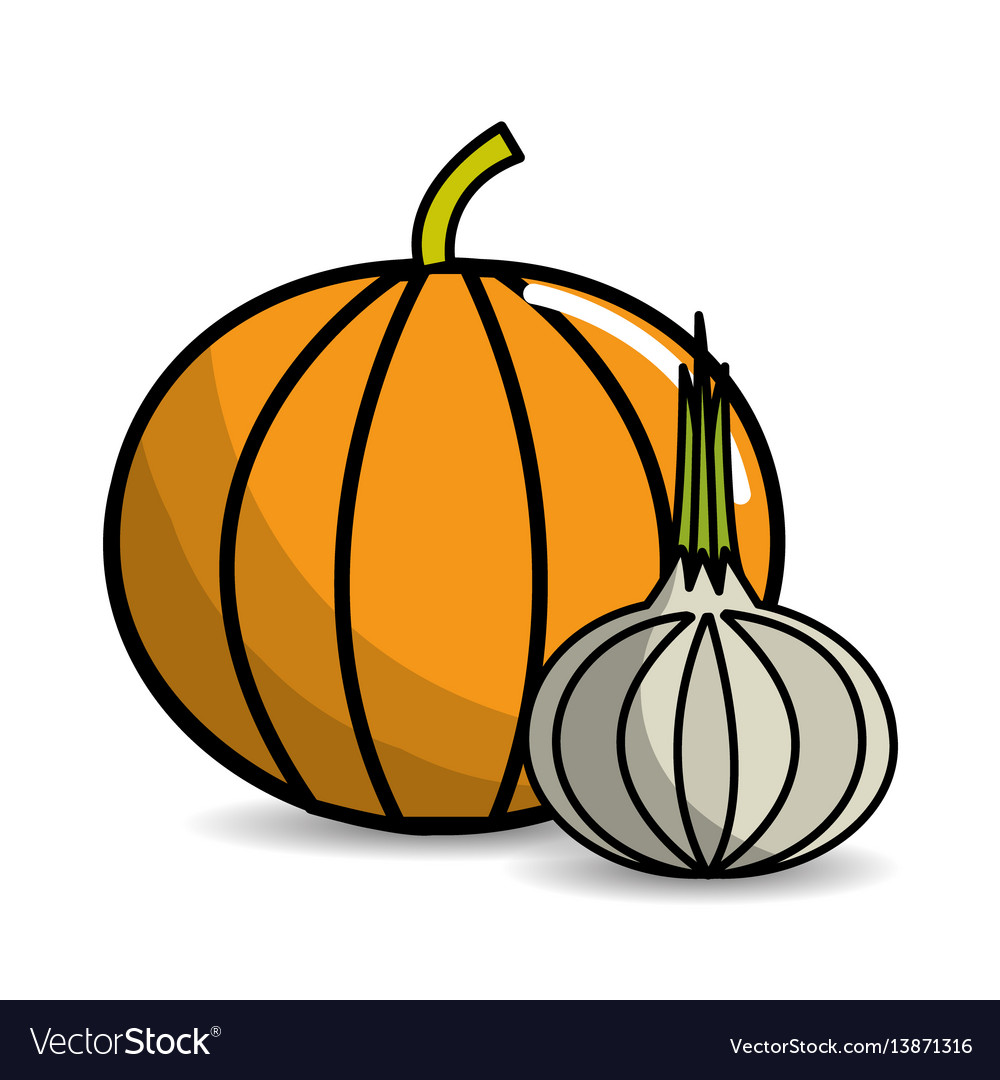 Pumpkin and garlic vegetable icon