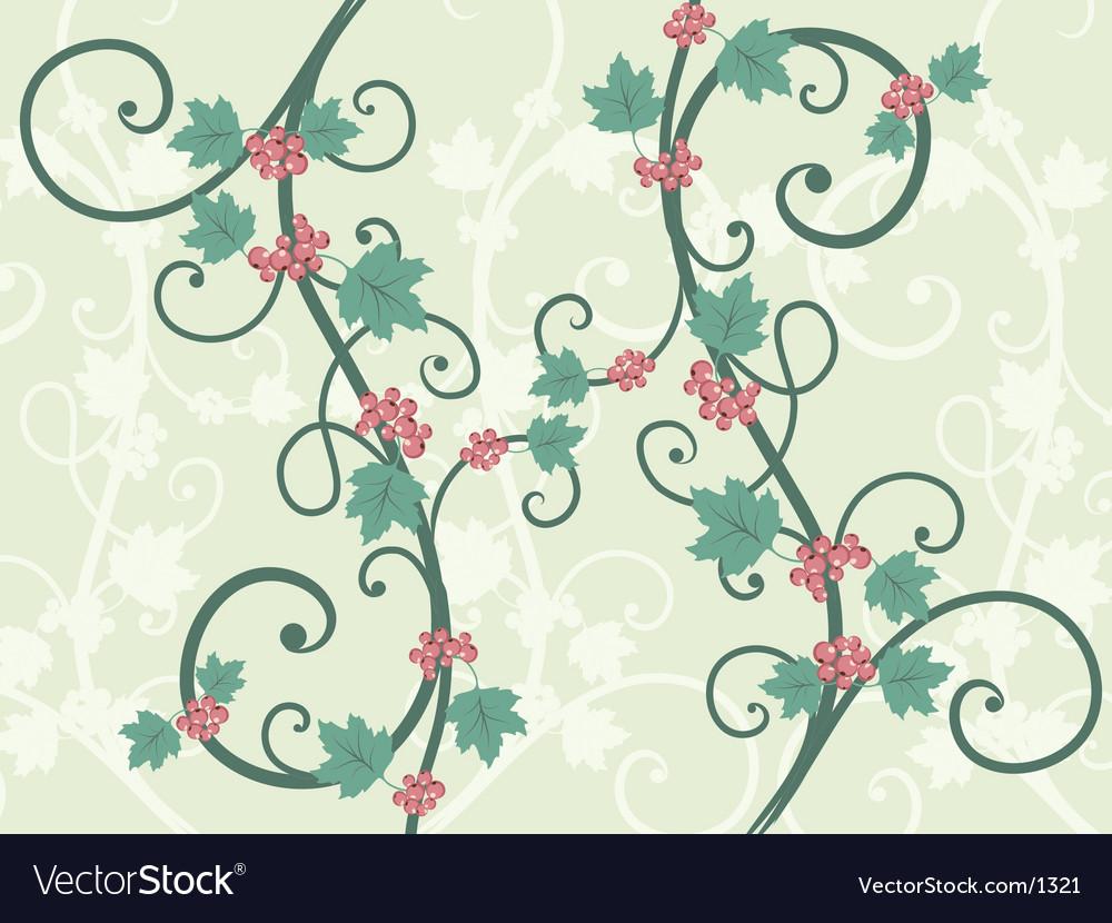 Decorative vines vector image