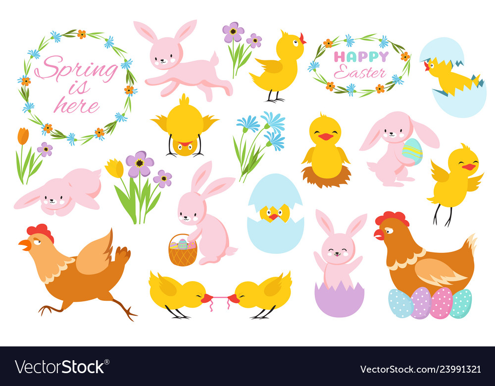 Easter bunny chicks and spring flowers funny