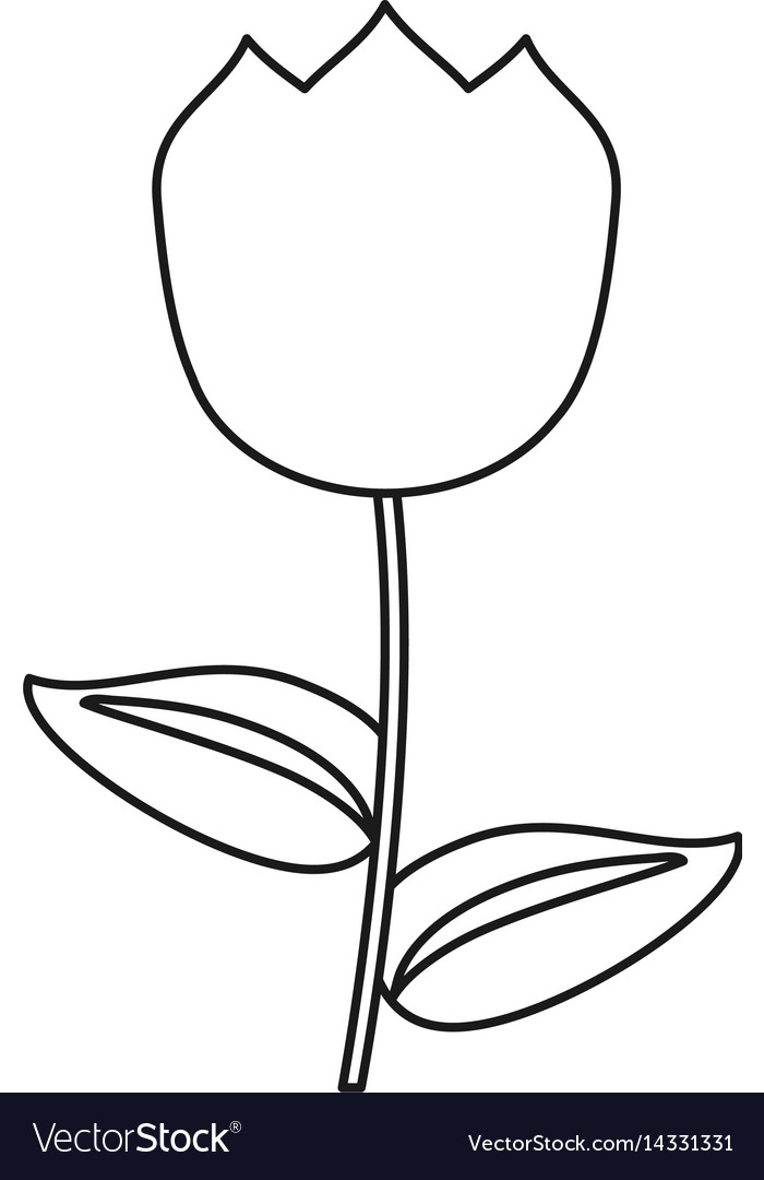 Tulip flower decoration easter thin line