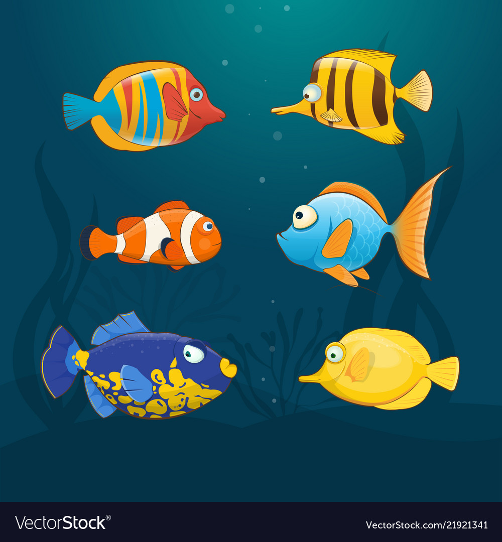 Colorful exotic fishes underwater