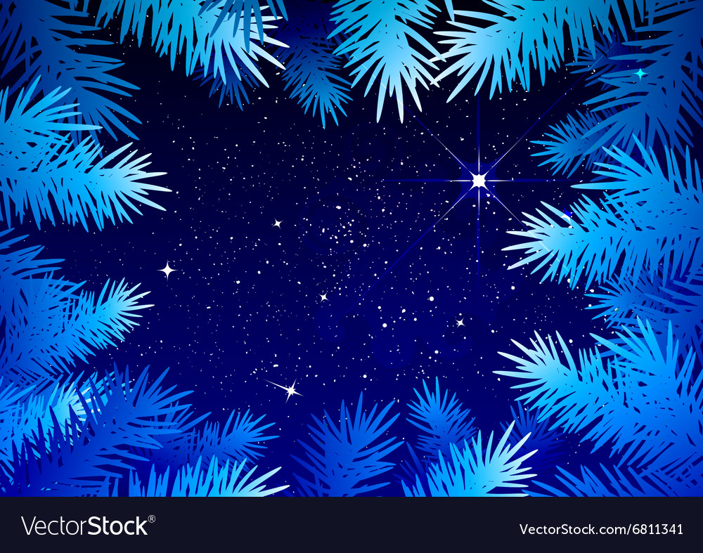 Starry sky in the winter forest Spruce branches vector image