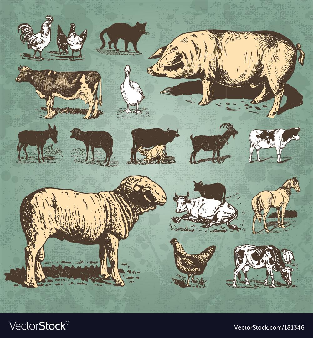 Farm animals vintage set