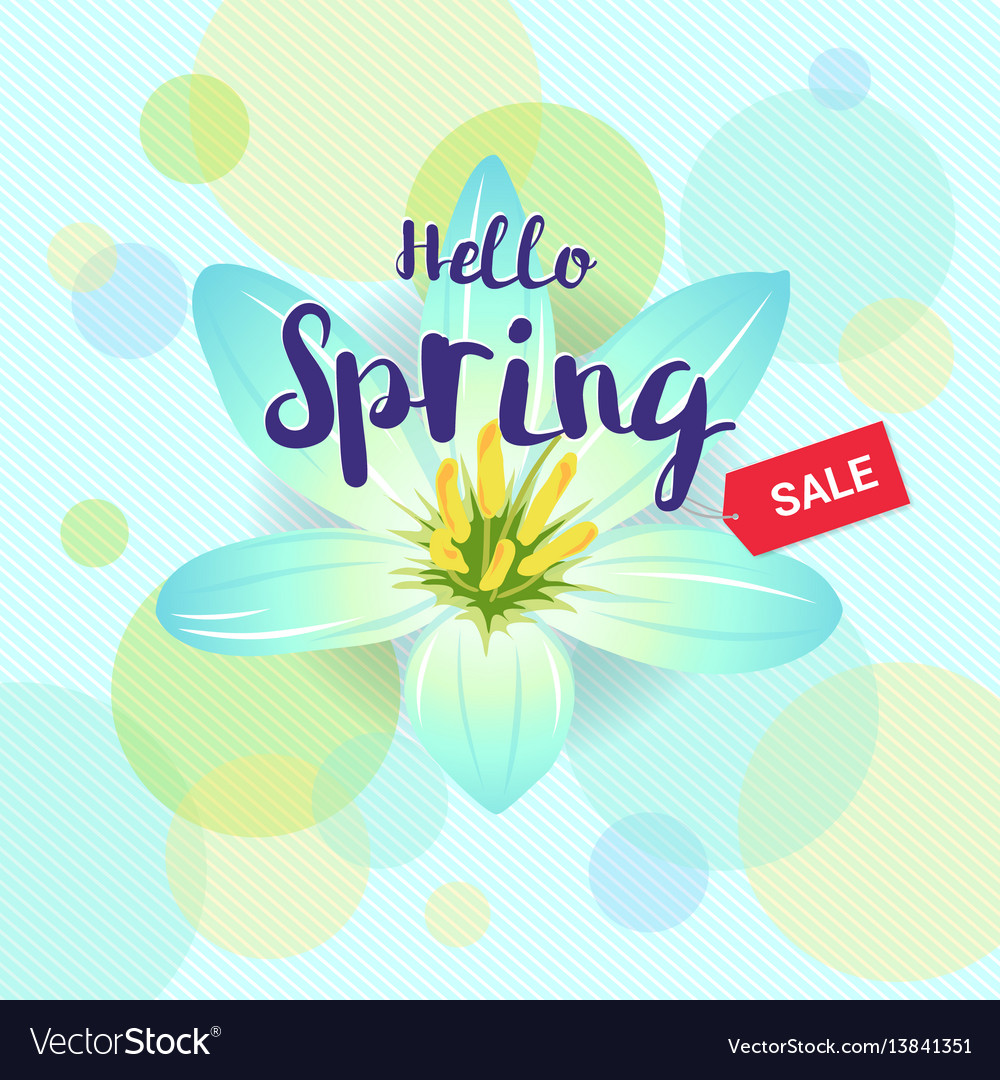 Floral spring with light blue flower and colorful vector image