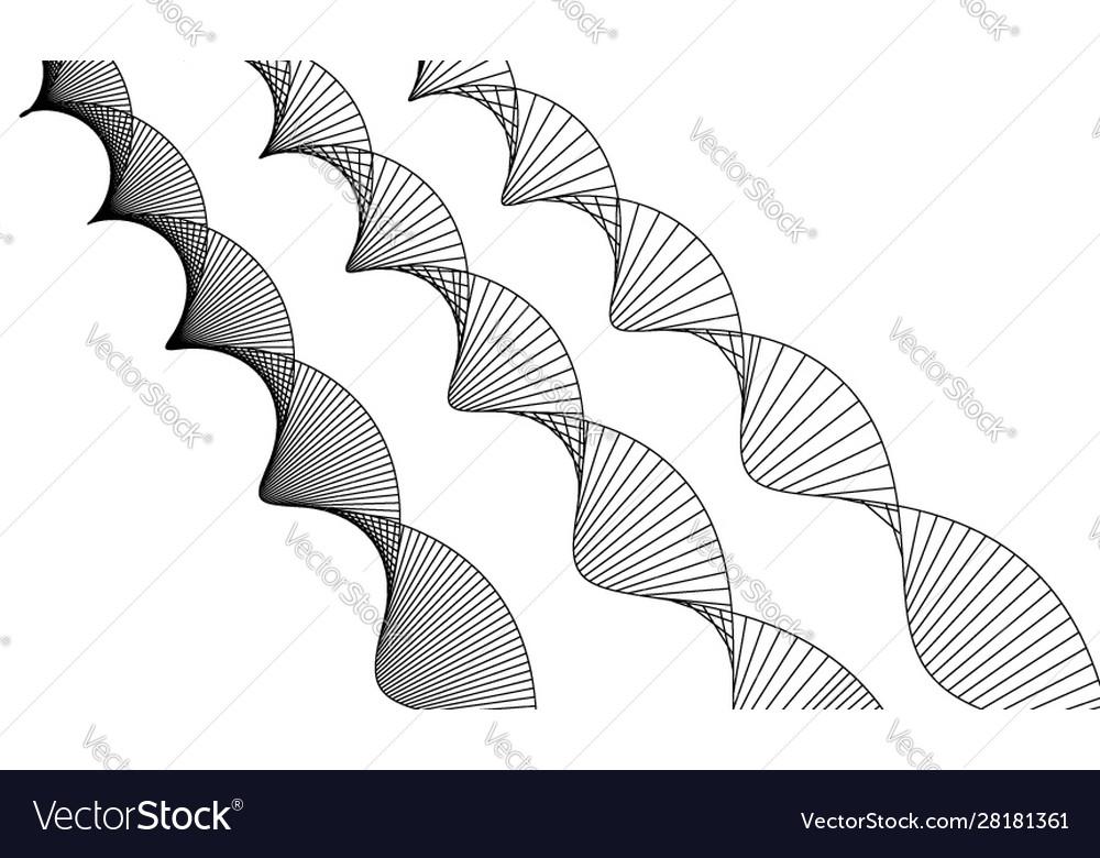 Dna structure deoxyribonucleic acid