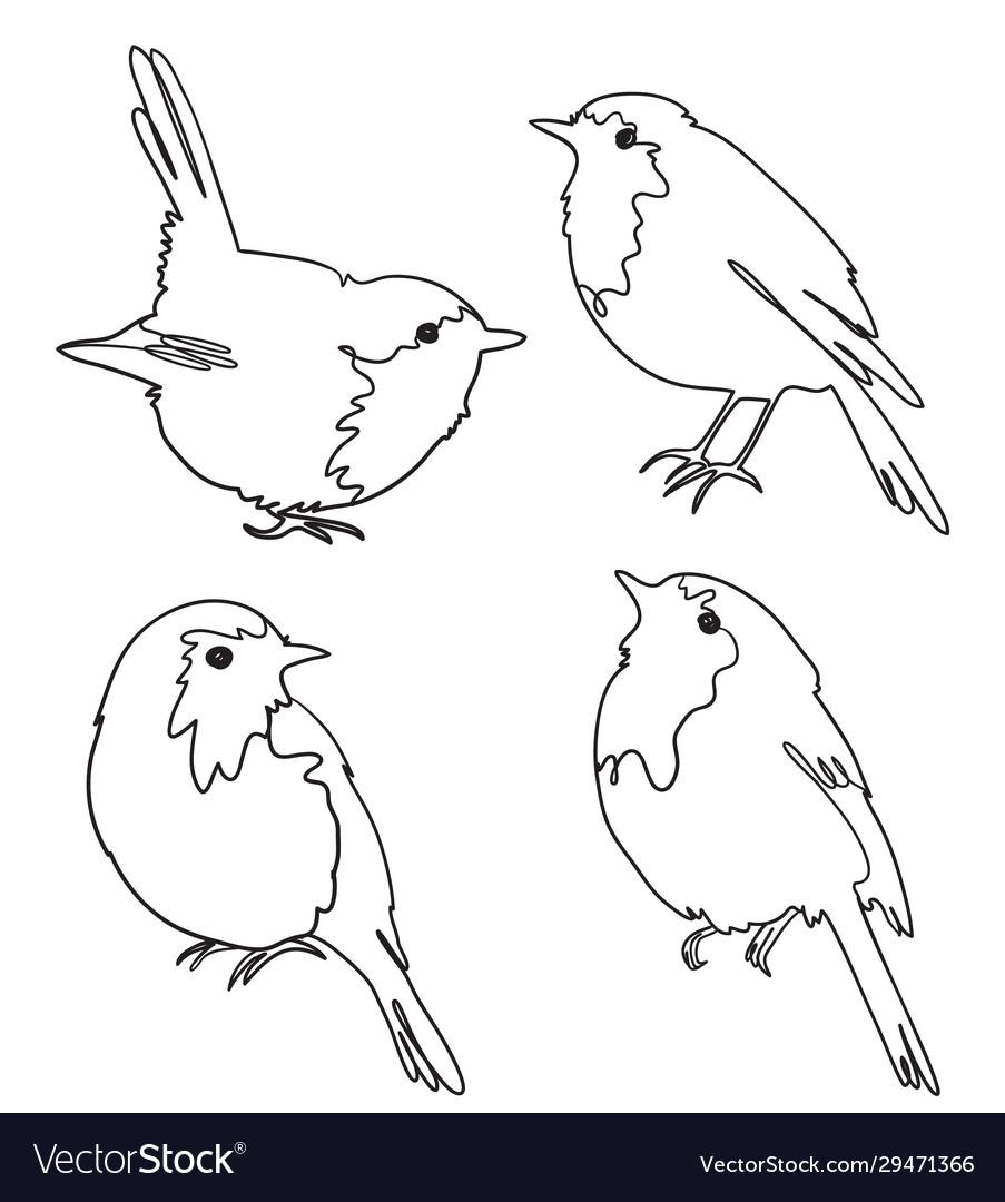 Set four robin birds freehand outline