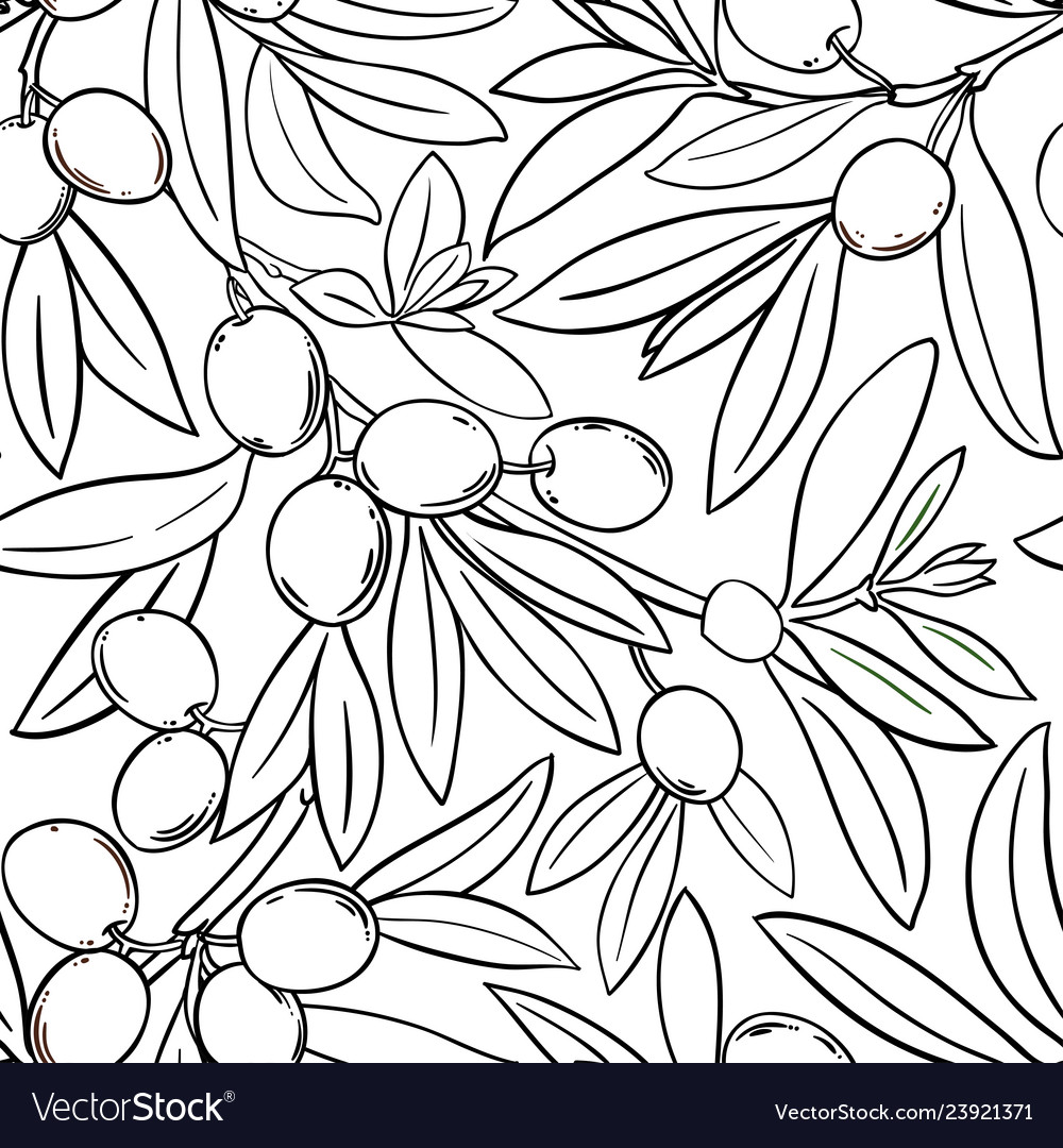 Olive branches pattern on white background