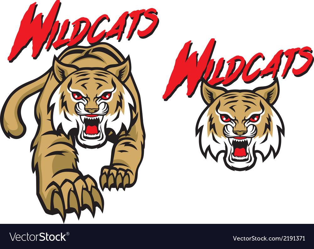Wildcats mascot vector image