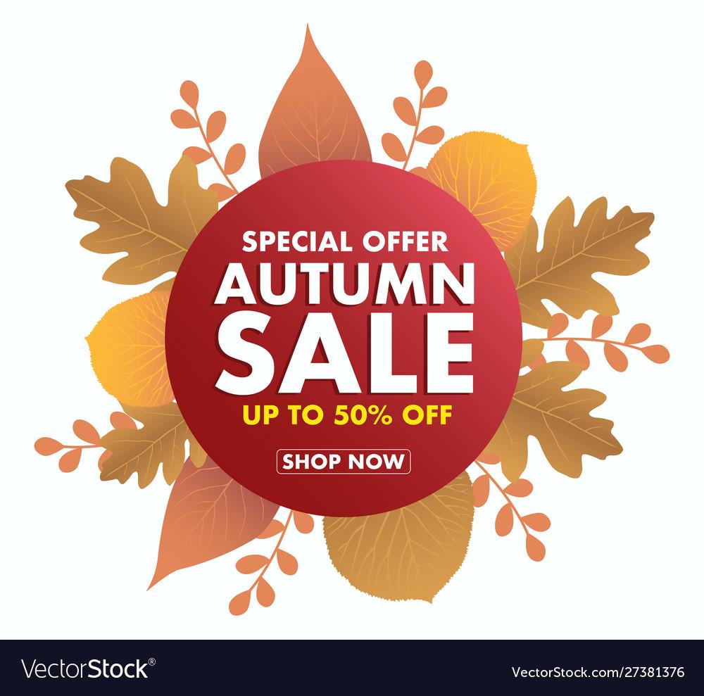 Autumn sale icon isolated on white